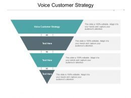 Voice Customer Strategy Ppt Powerpoint Presentation Summary Format Cpb