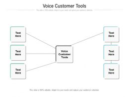Voice Customer Tools Ppt Powerpoint Presentation Outline Slideshow Cpb