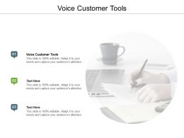 Voice Customer Tools Ppt Powerpoint Presentation Slides Example File Cpb