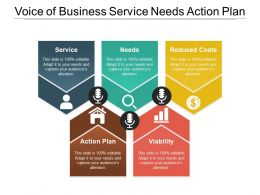 Voice Of Business Service Needs Action Plan