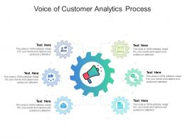 Voice Of Customer Analytics Process Infographic Template