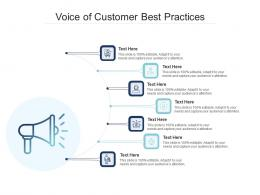 Voice Of Customer Best Practices Infographic Template