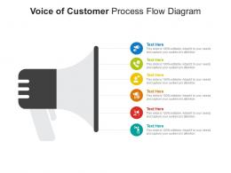 Voice Of Customer Process Flow Diagram Infographic Template
