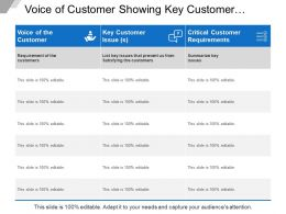 Voice Of Customer Showing Key Customer Issues And Critical Customer Requirements