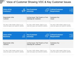 Voice Of Customer Showing Voc And Key Customer Issues