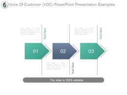 Voice Of Customer Voc Powerpoint Presentation Examples