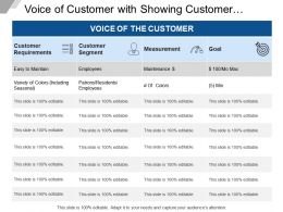 Voice Of Customer With Showing Customer Segment And Measurement