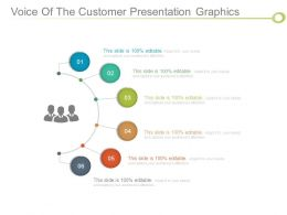 Voice Of The Customer Presentation Graphics