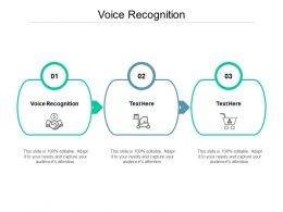Voice Recognition Ppt Powerpoint Presentation Portfolio Files Cpb