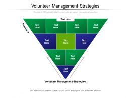Volunteer Management Strategies Ppt Powerpoint Presentation Professional Aids Cpb