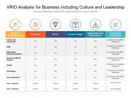 VRIO Analysis For Business Including Culture And Leadership