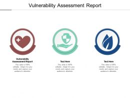 Vulnerability Assessment Report Ppt Powerpoint Presentation Summary Information Cpb