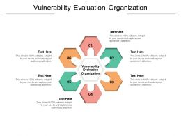 Vulnerability Evaluation Organization Ppt Powerpoint Presentation Infographic Template Rules Cpb