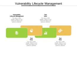 Vulnerability Lifecycle Management Ppt Powerpoint Presentation Outline Graphics Download Cpb