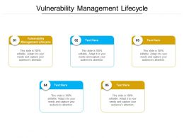 Vulnerability Management Lifecycle Ppt Powerpoint Presentation Infographic Template Format Cpb