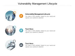 Vulnerability Management Lifecycle Ppt Powerpoint Presentation Outline Graphics Tutorials Cpb