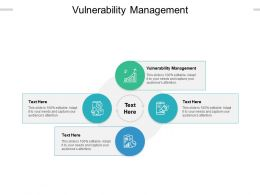 Vulnerability Management Ppt Powerpoint Presentation Inspiration Infographics Cpb