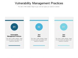 Vulnerability Management Practices Ppt Powerpoint Presentation Infographics Sample Cpb