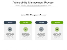 Vulnerability Management Process Ppt Powerpoint Presentation Layouts Template Cpb