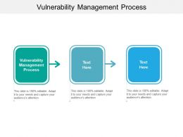 Vulnerability Management Process Ppt Powerpoint Presentation Show Backgrounds Cpb