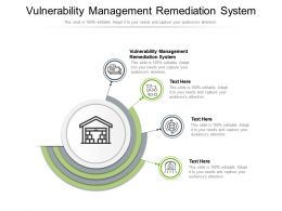 Vulnerability Management Remediation System Ppt Powerpoint Presentation Professional Demonstration Cpb