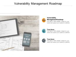 Vulnerability Management Roadmap Ppt Powerpoint Presentation Outline Template Cpb