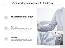 Vulnerability Management Roadmap Ppt Powerpoint Presentation Show Cpb