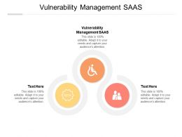 Vulnerability Management Saas Ppt Powerpoint Presentation Professional Clipart Cpb