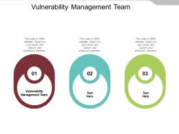 Vulnerability Management Team Ppt Powerpoint Presentation Slides Graphics Example Cpb