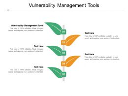 Vulnerability Management Tools Ppt Powerpoint Presentation Pictures Designs Download Cpb