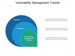 Vulnerability Management Tutorial Ppt Powerpoint Presentation Model Inspiration Cpb
