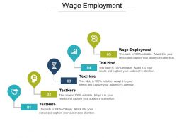Wage Employment Ppt Powerpoint Presentation Ideas Background Cpb