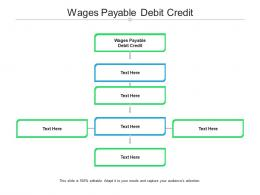 Wages Payable Debit Credit Ppt Powerpoint Presentation Summary Pictures Cpb