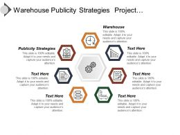 warehouse_publicity_strategies_project_development_tools_diversified_portfolio_Slide01