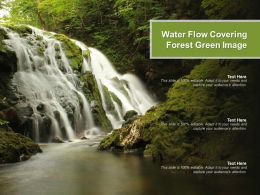 Water Flow Covering Forest Green Image