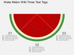 Water Melon With Three Text Tags Flat Powerpoint Design