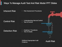 Ways To Manage Audit Test And Risk Model Ppt Slides