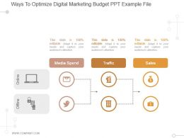 Ways To Optimize Digital Marketing Budget Ppt Example File