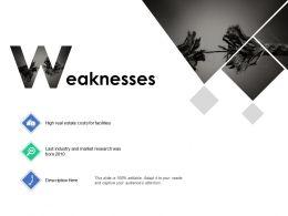Weaknesses Market Research B275 Ppt Powerpoint Presentation Ideas Format