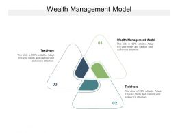 Wealth Management Model Ppt Powerpoint Presentation Professional Grid Cpb