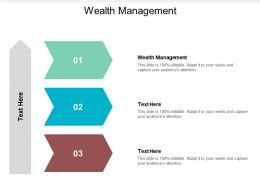 Wealth Management Ppt Powerpoint Presentation Ideas Maker Cpb
