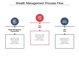 Wealth Management Process Flow Ppt Powerpoint Presentation Styles Example Introduction Cpb