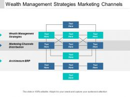 Wealth Management Strategies Marketing Channels Distribution Architecture Erp Cpb