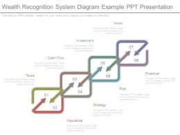 Wealth Recognition System Diagram Example Ppt Presentation