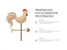 Weathervane Icon To Determine Wind Direction
