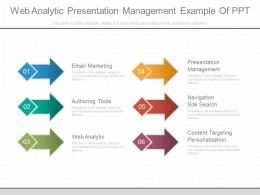 Web Analytic Presentation Management Example Of Ppt