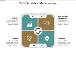 Web Analytics Management Ppt Powerpoint Presentation Gallery Vector Cpb