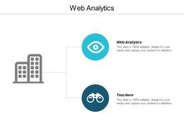 Web Analytics Ppt Powerpoint Presentation Infographic Template Example Introduction Cpb