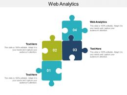 Web Analytics Ppt Powerpoint Presentation Inspiration Samples Cpb