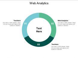 Web Analytics Ppt Powerpoint Presentation Summary Show Cpb